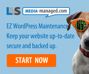EZ WordPress Maintenance